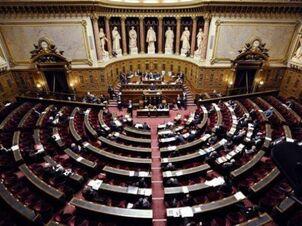 Senado real de solaria