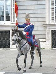 220px-Changing of the Guard, Royal Palace of Madrid - horse 2