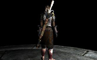 SwordoftheSagesonBack