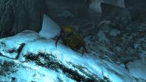 Behemoth Scissor Beetle