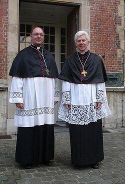 Canons Bruges; Sint-Salvatorskapittel 50