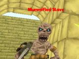 Mummified Slave