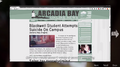 Arcadia Bay Online News.png