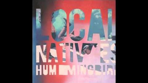 Local Natives - Mt
