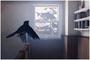 TX MinChoice E4 3A SaveBird