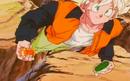 Goku finds the Six-Star Ball