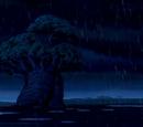 Rafiki's Ancient Tree