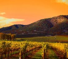 0a167ed319ffc5ba5a722406c66e6032--napa-valley-wineries-napa-winery