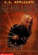 Remnants 2 Destination Unknown cover
