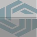 Genesis Staffing Company Insignia