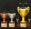 Carrot Plant Trophies