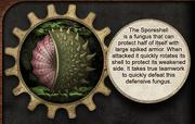 Fungus Sporeshell