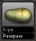 Ripe Pawpaw