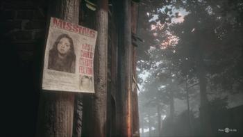 Celeste missing poster