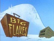 Big Flakes