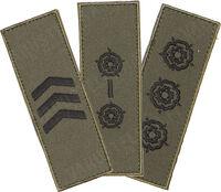 Asstd rank insignia 034
