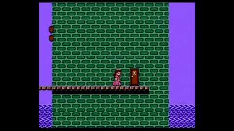 Replay - Super Mario Bros 2