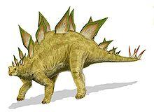 File:Stegasaurus Stenops.jpg