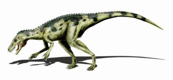 File:Herrerasaurus BW.jpg