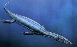 Anarosaurus