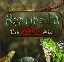 Reptiwiki