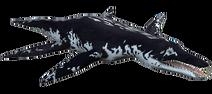 Liopleurodon profile
