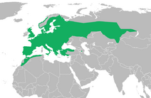 European common toad distribution