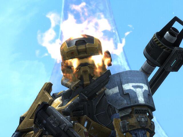 File:Halo marrow.jpg