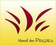 Prigors3-890e41