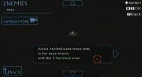 Hormigas (Archivo)
