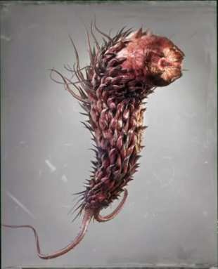 https://vignette.wikia.nocookie.net/residentevil/images/0/05/Las_Plagas_Organisms_of_War_-_Las_Plagas.PNG/revision/latest/scale-to-width-down/310?cb=20160304115608