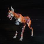 RERES Zombie Dog Skin004