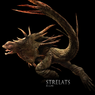 StrelatsFull