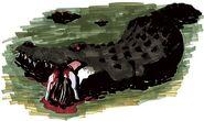 Aligator15