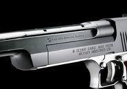 Desert Eagle .50 AE gun 2