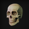 RE2 Remake Accessory Skull Icon