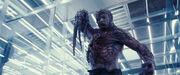 Resident-Evil-Extinction-resident-evil-1797369-1024-427