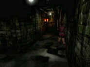 Irons' secret passage (5)