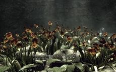 Jardín subterráneo 4