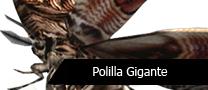 PTPolilla Gigante