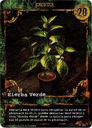 Carta Planta Verde