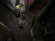RE3 Dumpster Alley 7