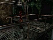 Cavernous passage (9)