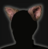 RE2 Remake Accessory Cat Ears Icon