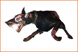 Zombiedog ene