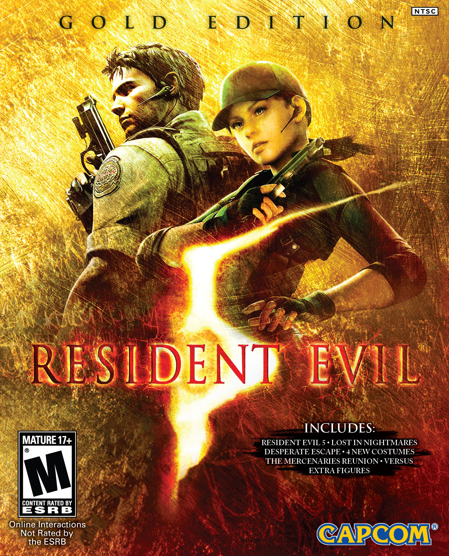 Image result for Resident Evil 5 cover pc