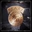 Resident Evil 0 award - Treatment Plant Complete