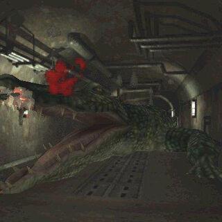 Клэр и Аллигатор