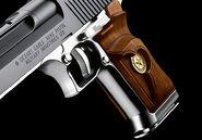 Desert Eagle .50 AE gun 3