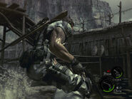 Execution ground in RE5 (Danskyl7) (18)